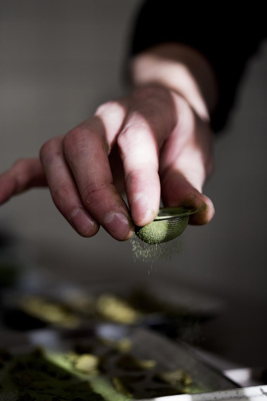 Steinbeisser Botanische Gastronomie 3