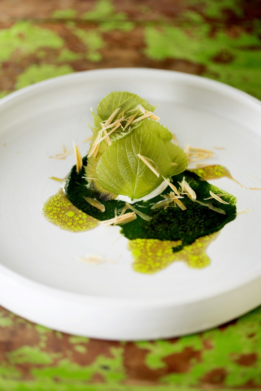 Young almond cheese with lime tree leaves, hogweed and fermented mushrooms served on a clay plate by J. C. Herman.