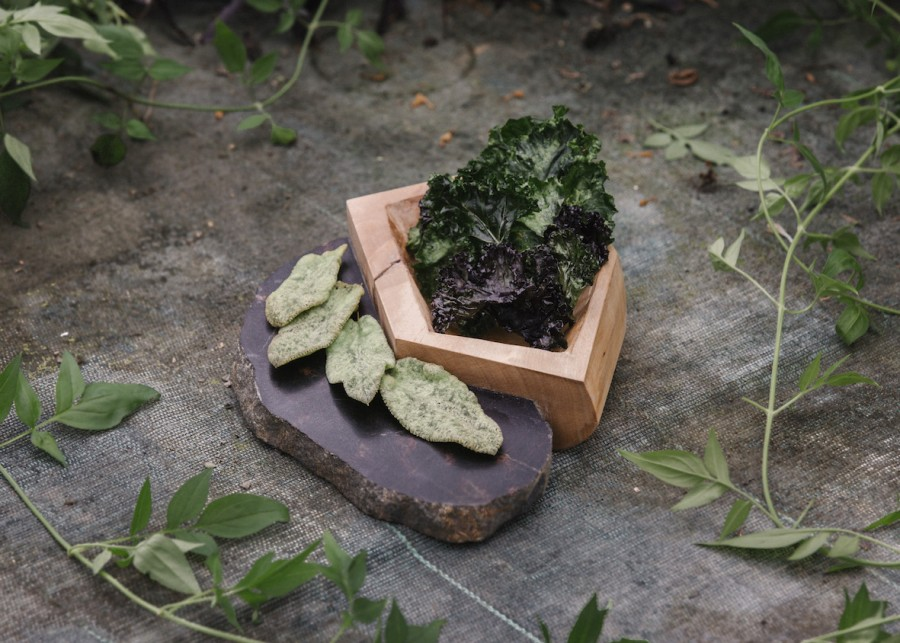 Salvia and Kale Chips served on a wood stone plate by Sara Gackowska.