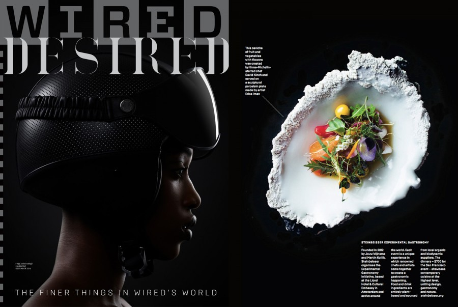 Steinbeisser featured in Wired UK December 2016