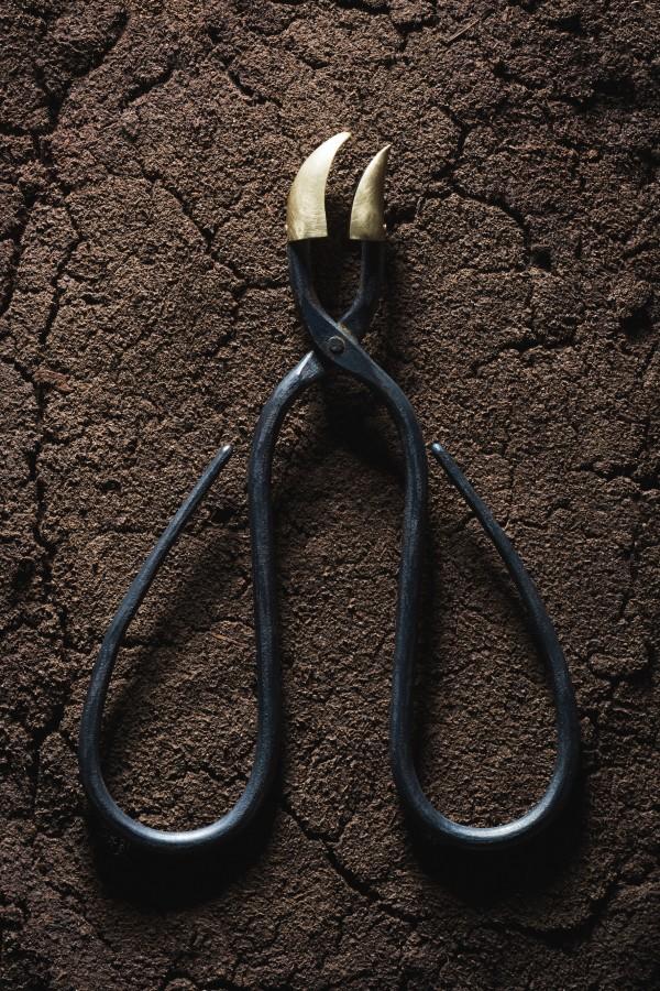 beak scissors spoon by Sophie Hanagarth
